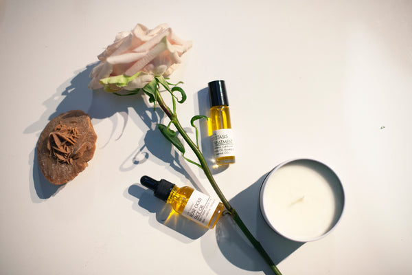 Rosehip Oil Set - VISCERA