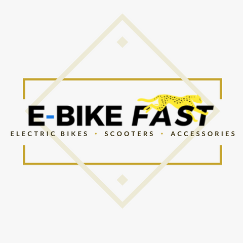 Best ebike brand in the US