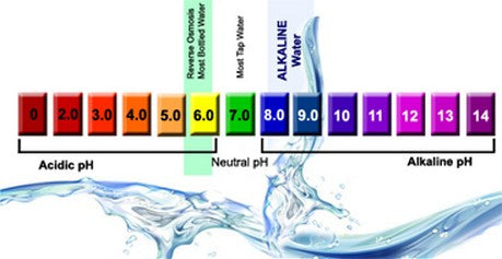 high ph water ph scale