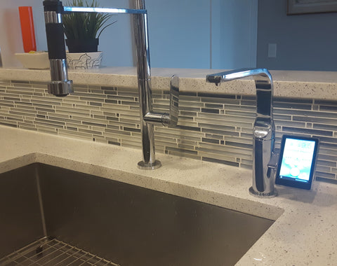 royale under-counter water ionizer