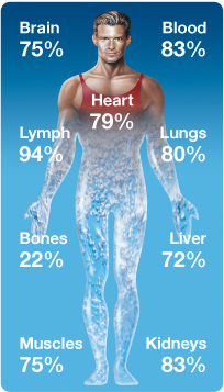 water content in your body