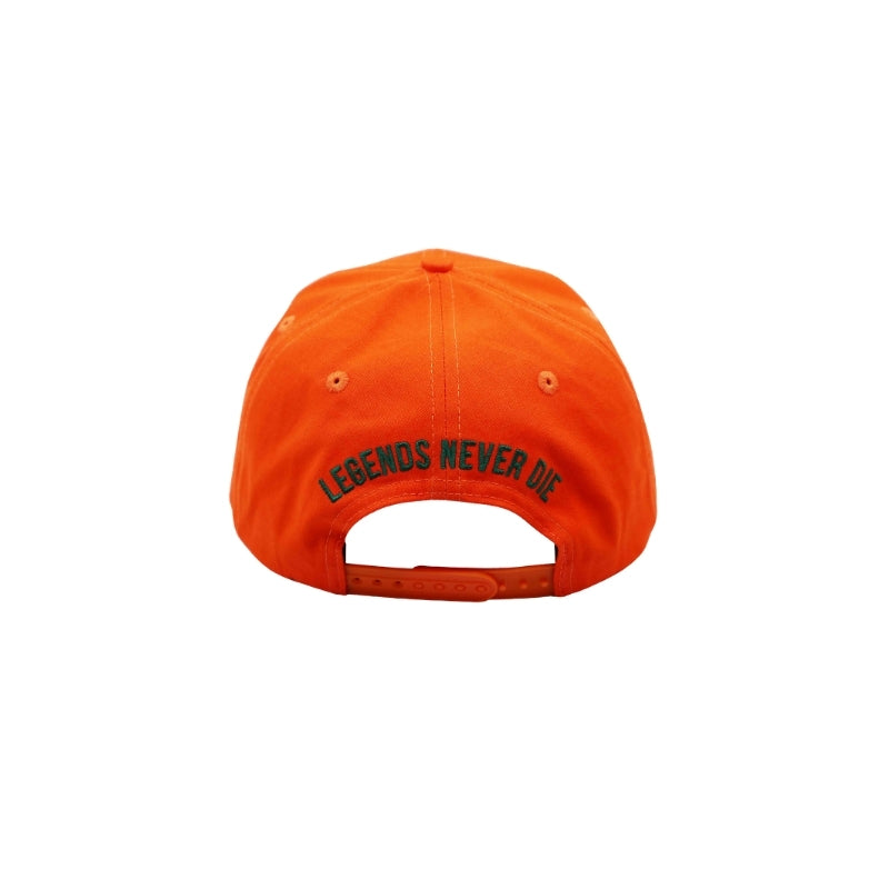 LEGENDS NEVER DIE - Snapback