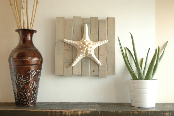 knobby starfish wall art