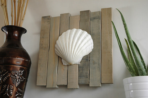 scallop seashell sign