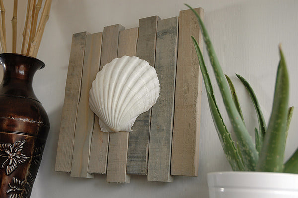 seashell art on wood pallet