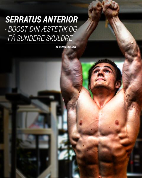 Serratus Anterior Power Addict