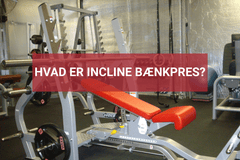 incline bænkpress