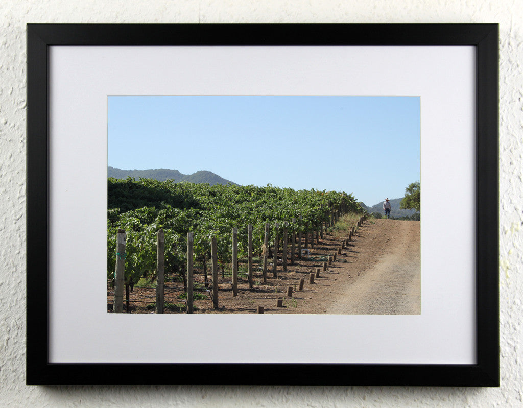 'Vineyard Manager' - Original Wine Art - California Vineyard Photography, framed