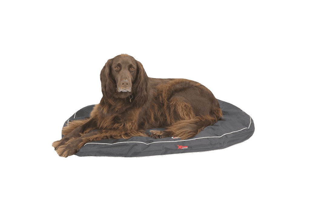 The Doggy Dreamer X-Treme All Weather Oval Dog Bed | Black