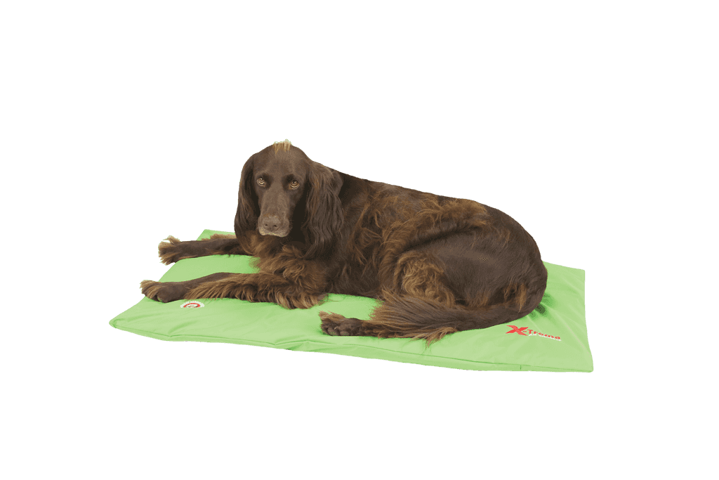 The Doggy Duvet Bench X-Treme All Weather Dog Mat | Lime Green