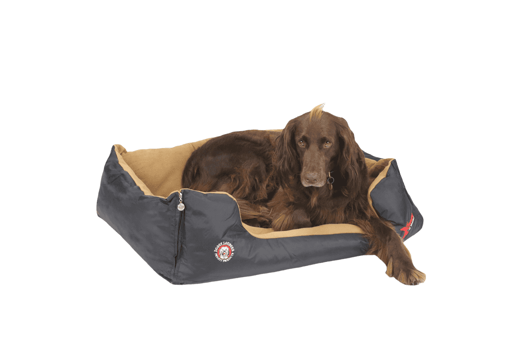 The Doggy Lounger X-Treme All Weather Dog Bed | Black
