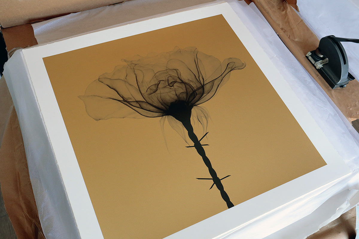 Thorns gold print