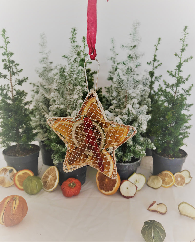 Christmas Hanging Metal Mesh Star Decoration