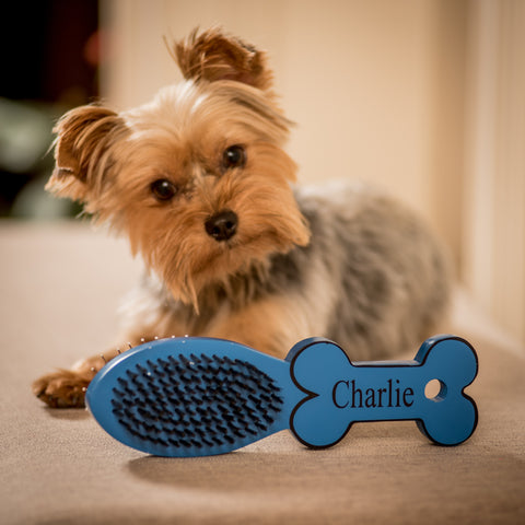 Personalized Pet Brush in Two Colors
