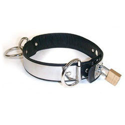 Stockroom Locking Stainless Steel and Leather Collar