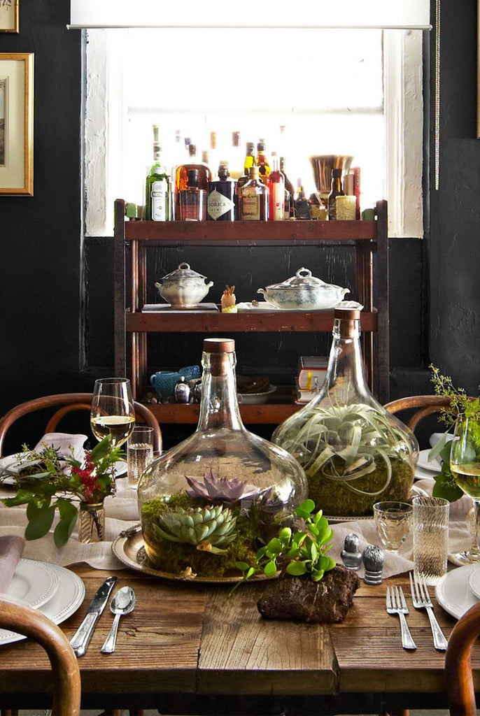Terrarium and Plants on a Table