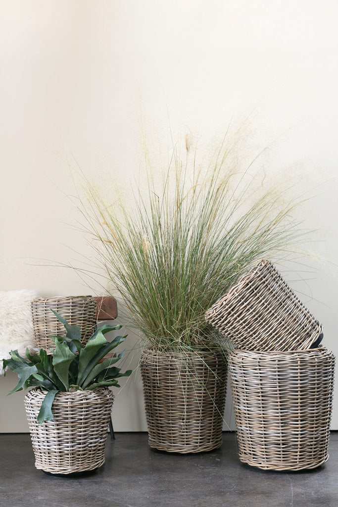 Rattan Baskets With Plants
