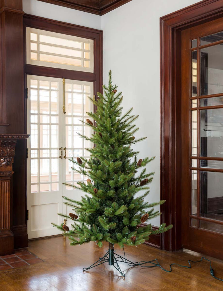 6' Park Hill Green Spruce Christmas Tree LED - Colonial House of Flowers | bespoke floral design + online shop | Atlanta, Georgia