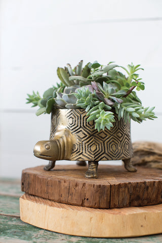 Tommie Turtle Aluminum Pot by Accent Decor - Colonial House of Flowers | The Florist of Statesboro & Georgia Southern