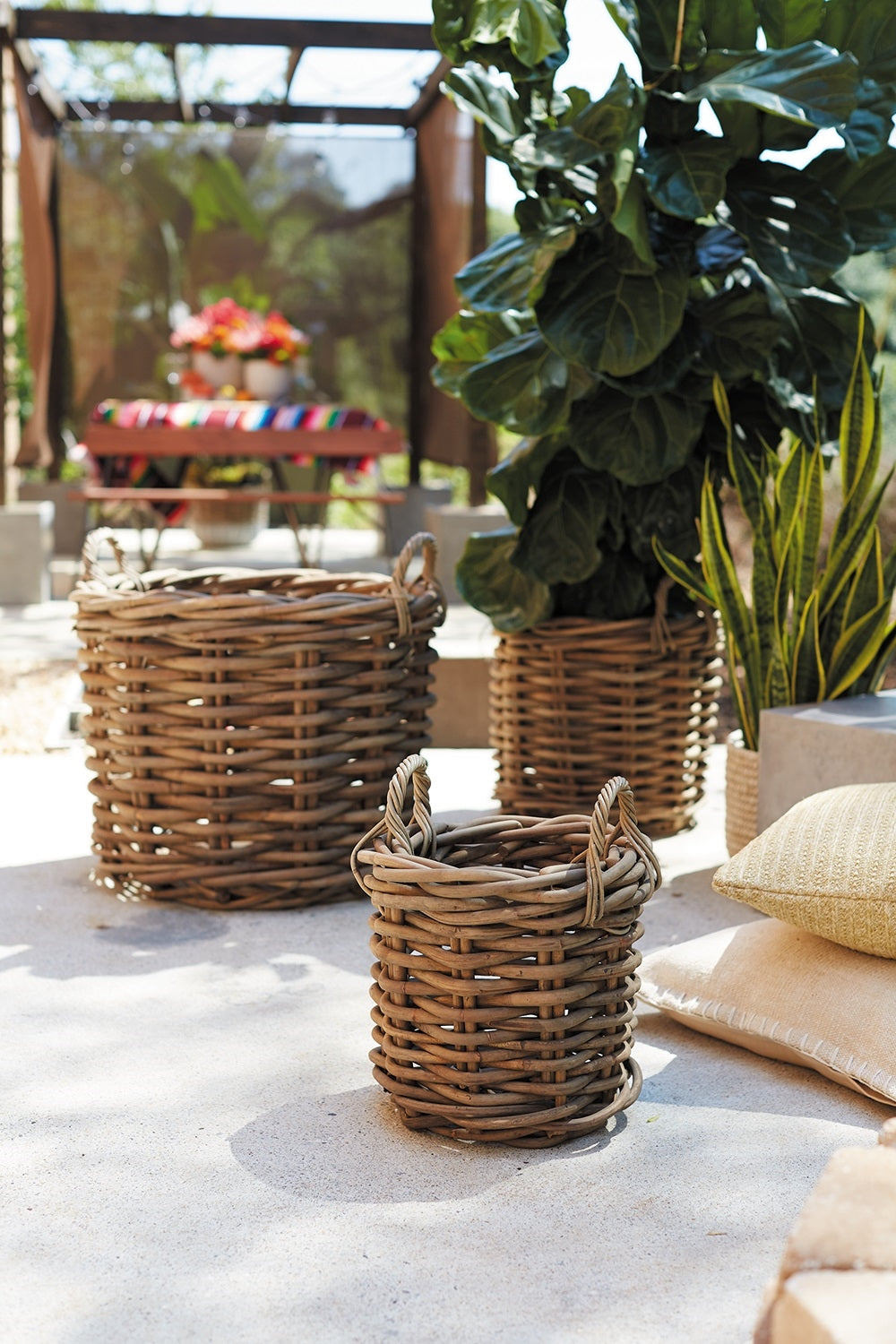 Cabana Collection Ratan Woven Wood Basket+ Bowl by Accent Decor Colonial House of Flowers Atlanta Plants Vases Containers Florist Weddings Events Georgia Southern South