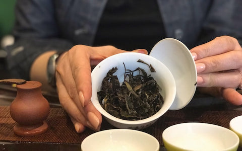 The Best Tea To Prevent Sickness During Seasons Change | October Feature