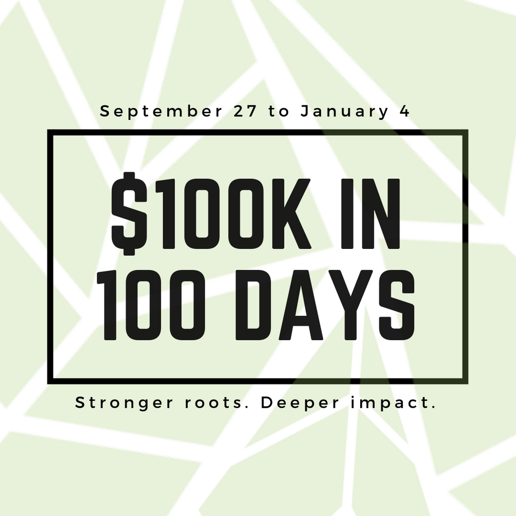 Why We're Raising 100K in 100 Days