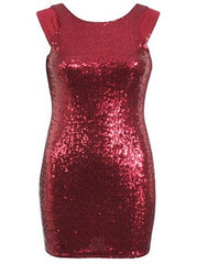 Bodycon Sequin Dress With Mesh