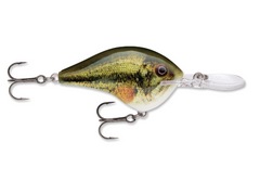 RAPALA DT® (Dives-To) Series-High Falls Outfitters