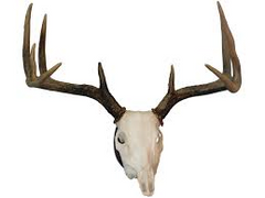 HS EUROPEAN MOUNT KIT-High Falls Outfitters