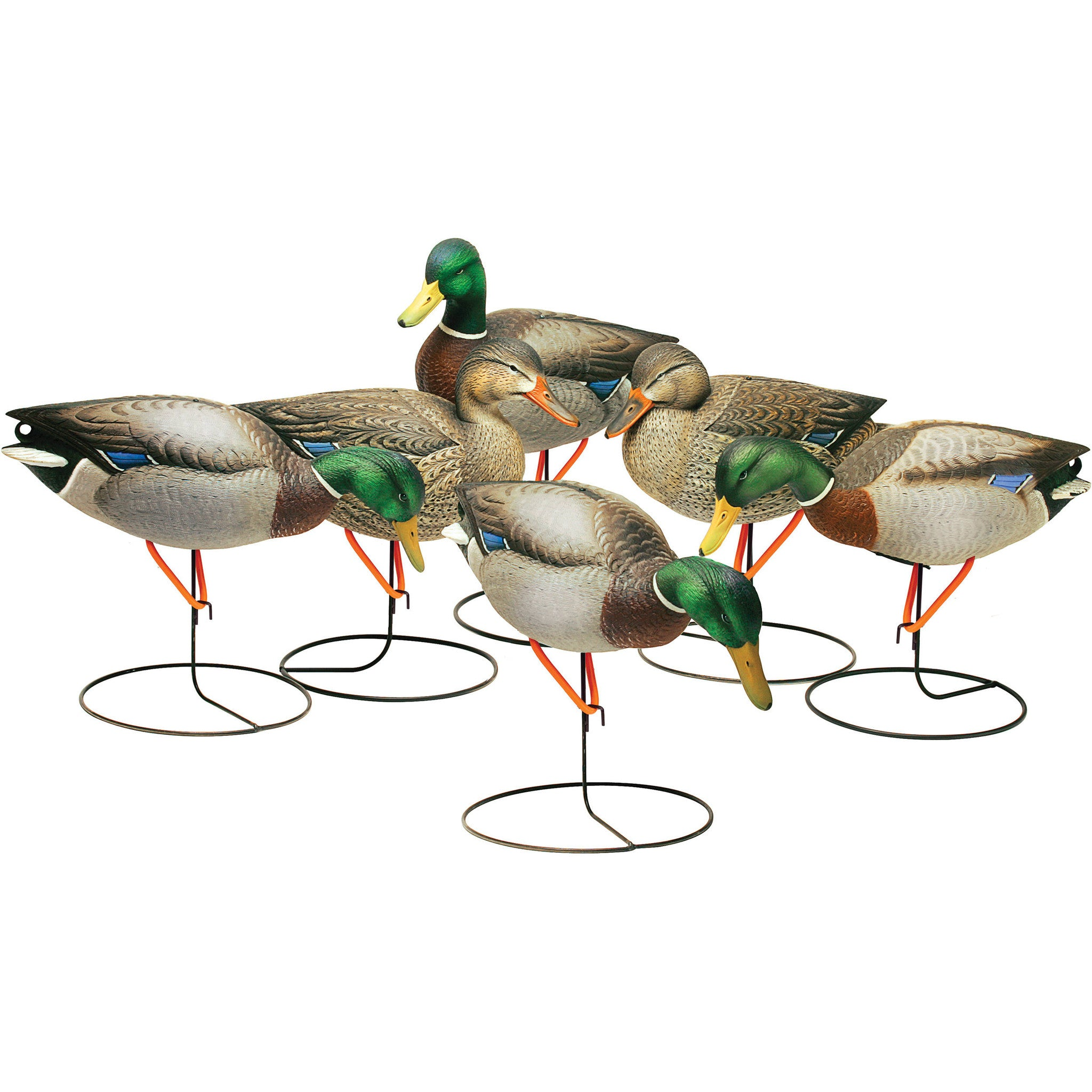 FINAL APPROACH FIELD MALLARD DECOYS 6 PACK-High Falls Outfitters