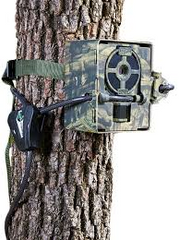 PRIMOS PROOF TRAIL CAMERA PROTECTOR BOX-High Falls Outfitters