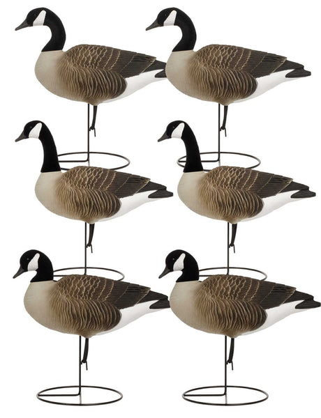 TANGLEFREE CANADA GOOSE FULL BODY UPRIGHT-Single-High Falls Outfitters