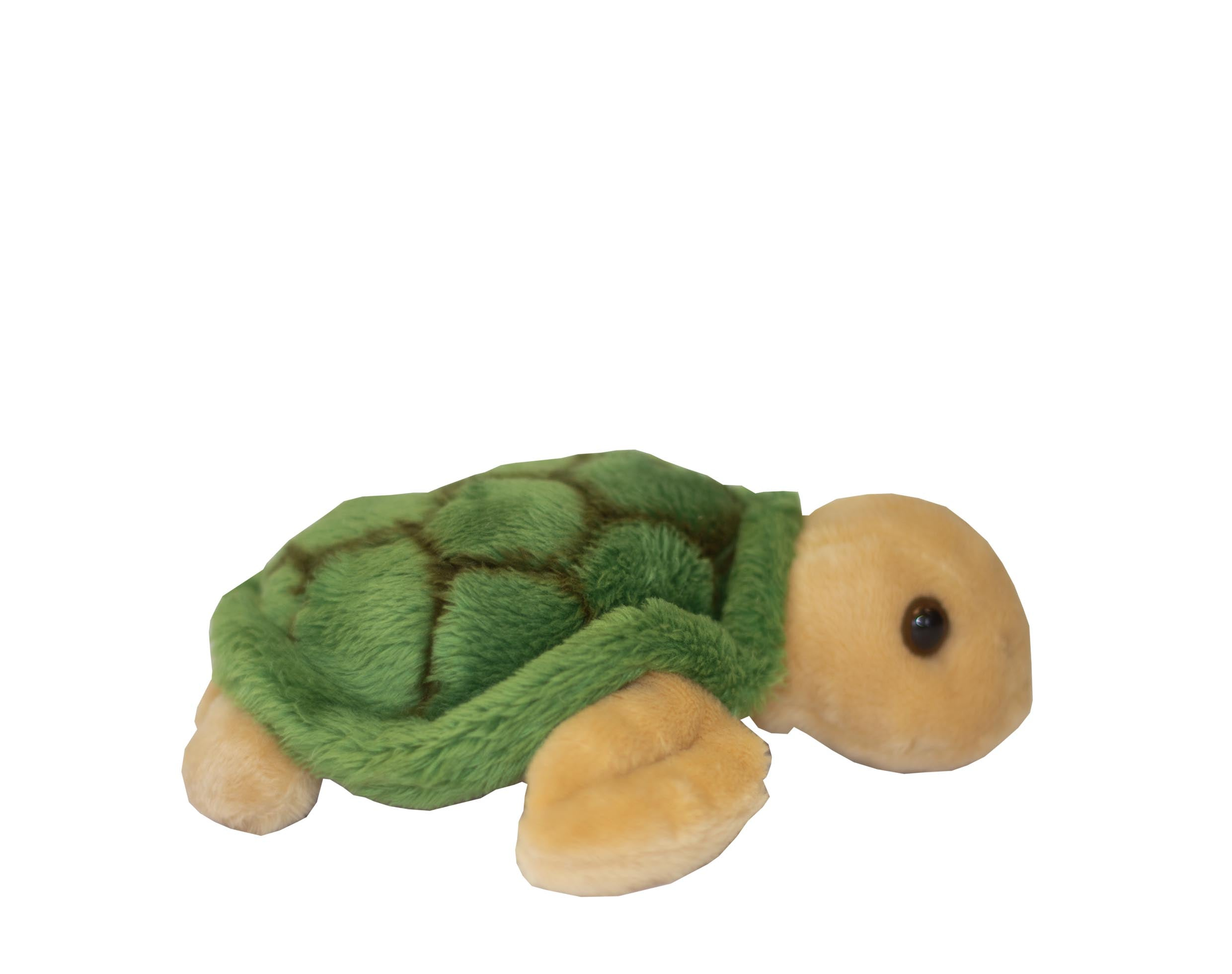Wild Green Turtle Soft Toy - Mini