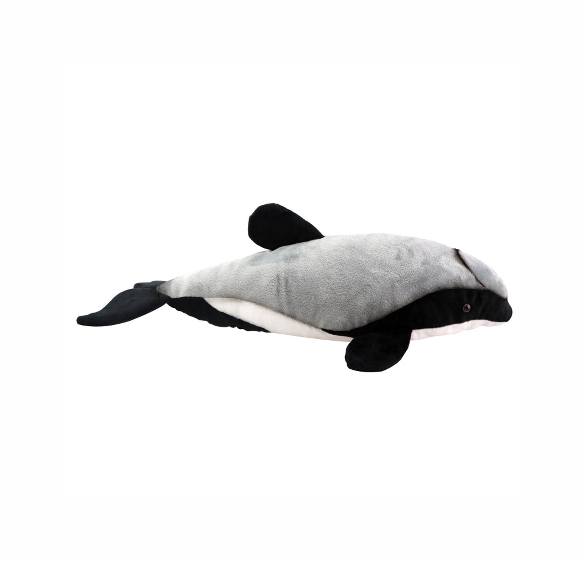 Hector/Maui dolphin soft toy with sound