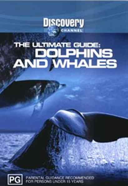 DVD Dolphins & Whales