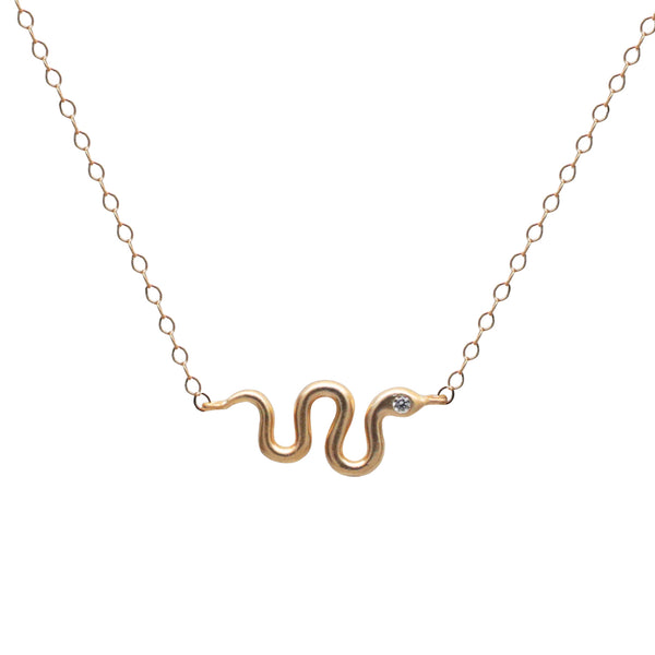 Snake Charm Necklace