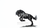 """Leap of Faith"" Friesian Horse Print"