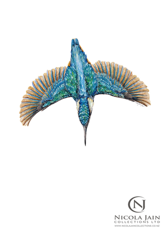 """Dive"" Kingfisher Print"