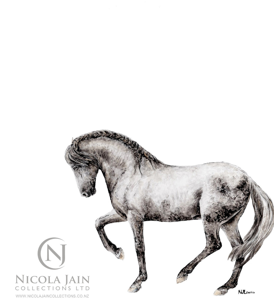 Spanish Horse Limited Edition Print 3
