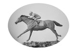 Commission: Racehorse Vavasour & Jockey Danielle Johnson
