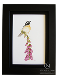 Whinchat on Foxglove - Hand painted on Porcelain
