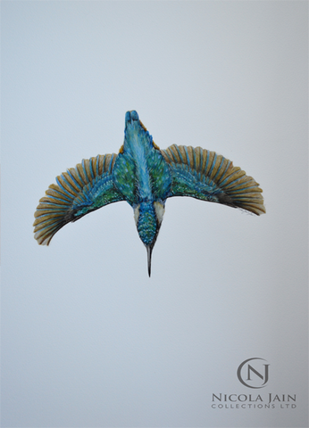 Diving Kingfisher - Original Painting (SOLD)