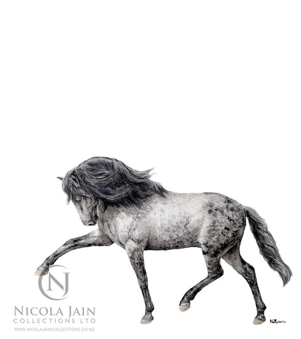 Spanish Horse Limited Edition Print 1