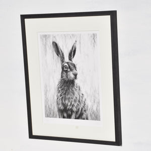 Brown Hare III Framed
