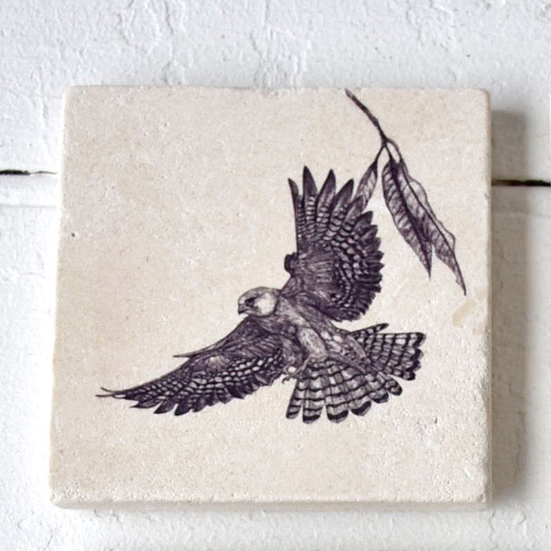 Red Footed Falcon Sketch Coaster