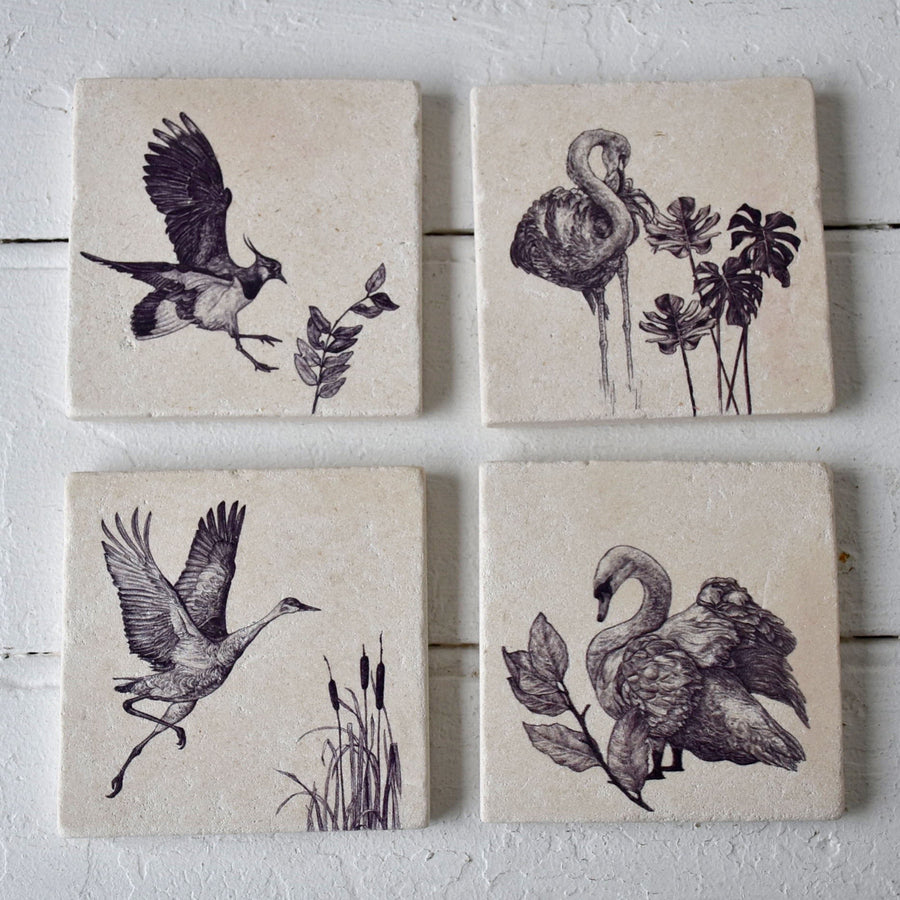 Northern Lapwing Sketch Coaster