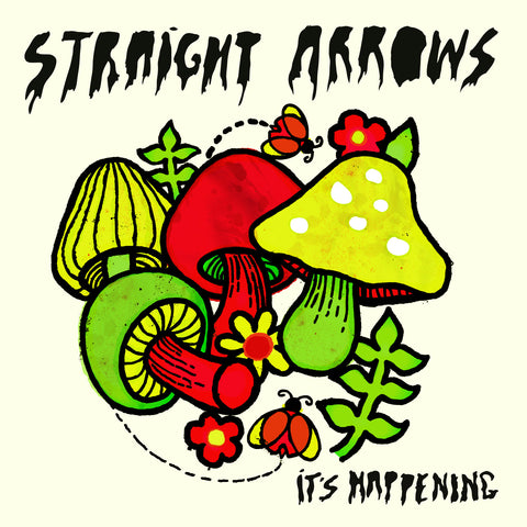 Straight Arrows - It's Happening LP