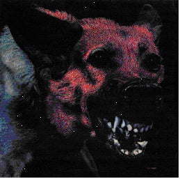 PROTOMARTYR - UNDER COLOR....   (LP / CD)
