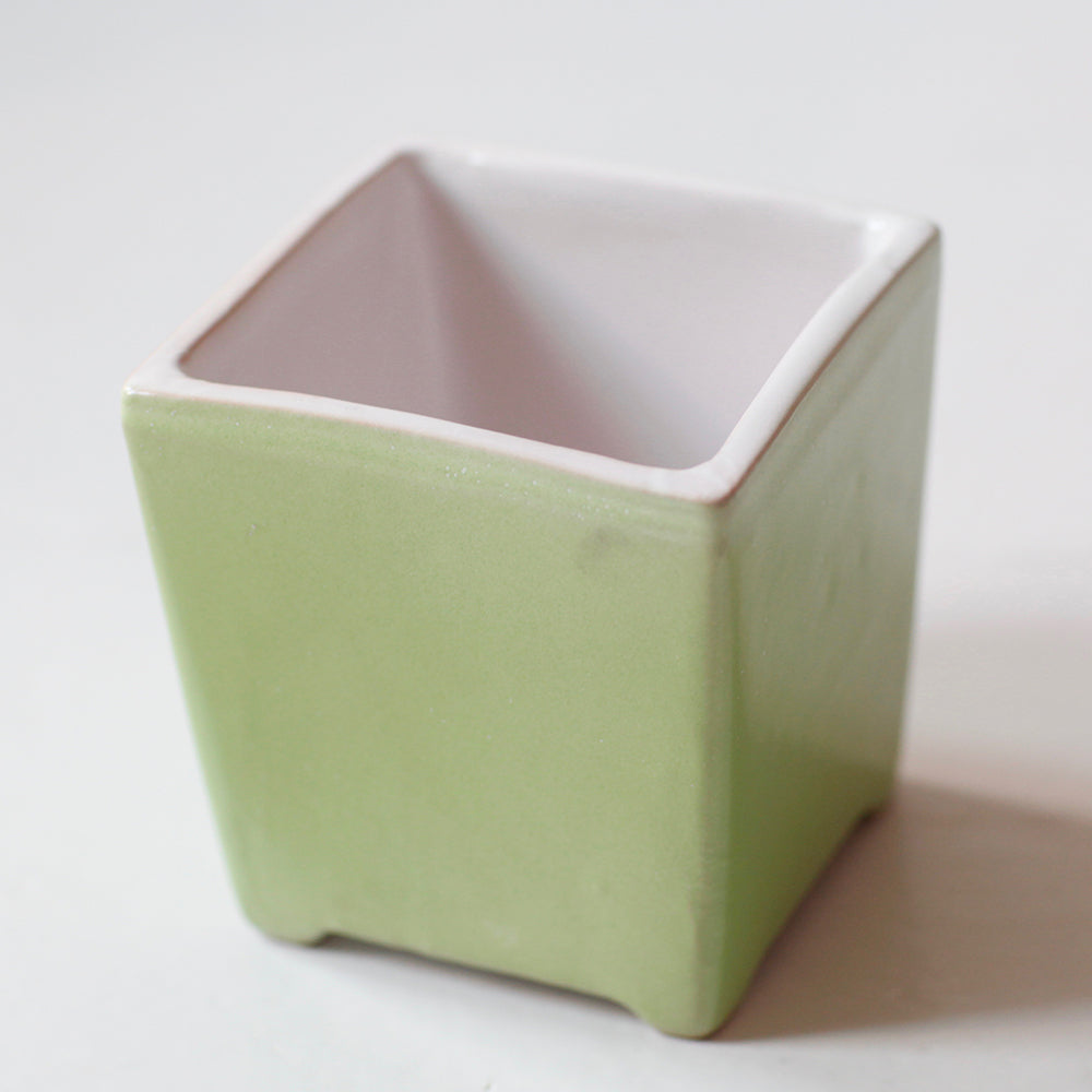 Herb Flower pot Green