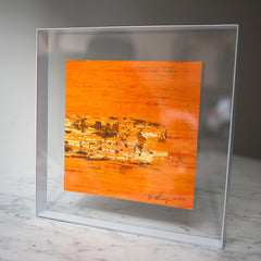 Plexiframe Orange Pond Square (New)